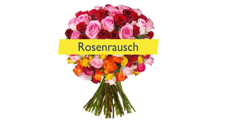 rosenrausch-big