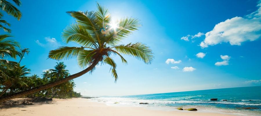2 Tage Tropical Island inkl. Übernachtung im Zelt und Frühstück nur 53,- Euro pro Person