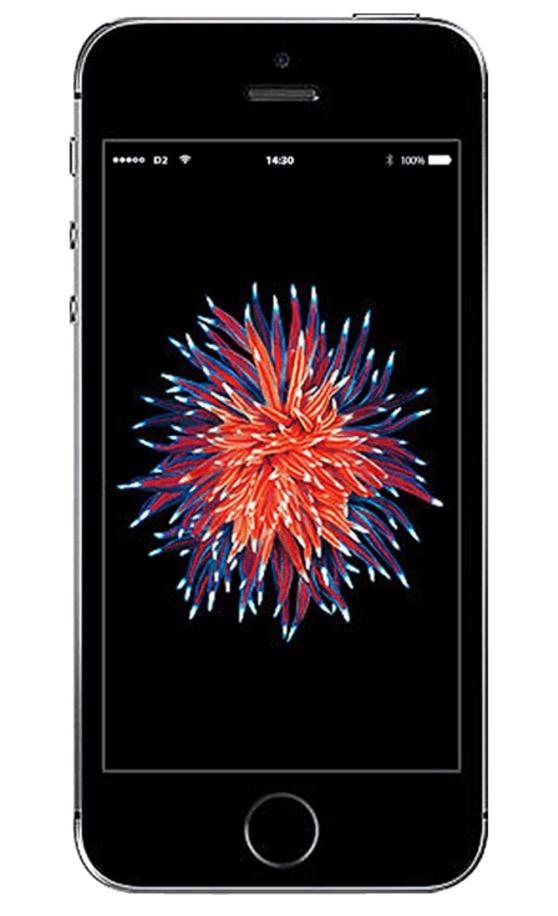 Vodafone Smart Surf mit 50 Freiminuten und -SMS sowie 2GB Daten für nur mtl. 14,99 Euro + Apple iPhone SE 32GB für nur 49,- Euro
