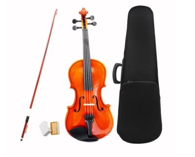 Andoer Geige mit Koffer