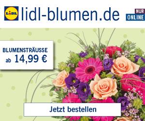 Nur heute am Freitag den 13. bei LIDL Blumen 13% Rabattgutschein auf das gesamte Sortiment