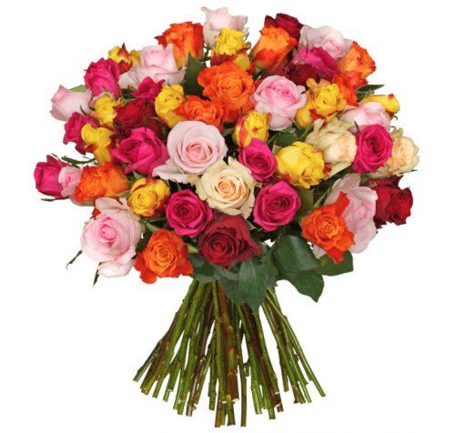 35 bunte Rosen für nur 24,98 Euro inkl. Versandkosten