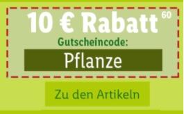 Lidl-Shop.de: Frühlingsanfang – Heute 10,- Euro Rabatt auf Pflanzen!