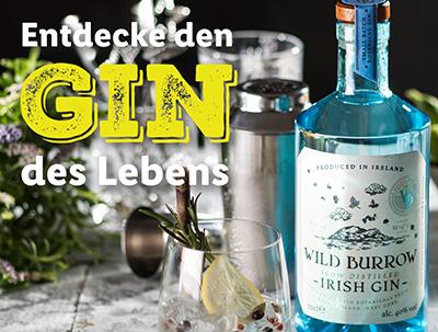 Viele verschiedene Gin und Tonic Water Sorten zu reduzierten Preisen – versandkostenfrei ab 30,- Euro