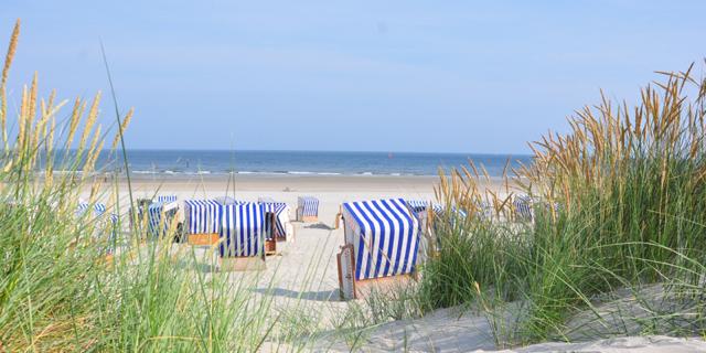 Center Parcs in den Sommerferien! Übernachtung im 4* Park Nordseeküste (83%) für 2 Personen nur 69,- Euro