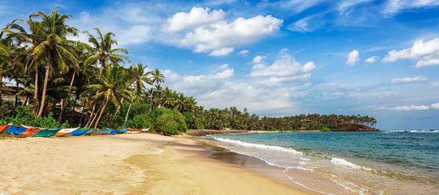 2 Wochen Sri Lanka, 3,5*Hotel (84%) direkt am Strand,Halbpension, Flug (1 Stopp), Zug zum Flug, Transfers für 865,- Euro