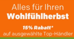 15% Rabatt ab 100,- Euro Bestellwert auf alles von über 200 Händlern bei Rakuten.de
