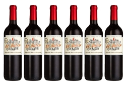 6 Flaschen Casa del Valle – El Tidón Tempranillo-Cabernet Sauvignon – VdT Castilla für nur 25,93 Euro