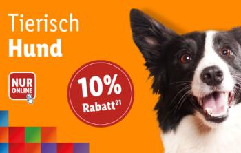 10% Rabatt auf Hundeartikel im Lidl Onlineshop