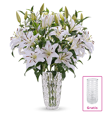 Blumenstrauß mit 20 weiße Lilien für nur für nur 24,98 Euro + gratis Vase