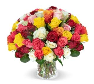 50 bunte Rosen für nur 27,98 Euro inkl. Versandkosten