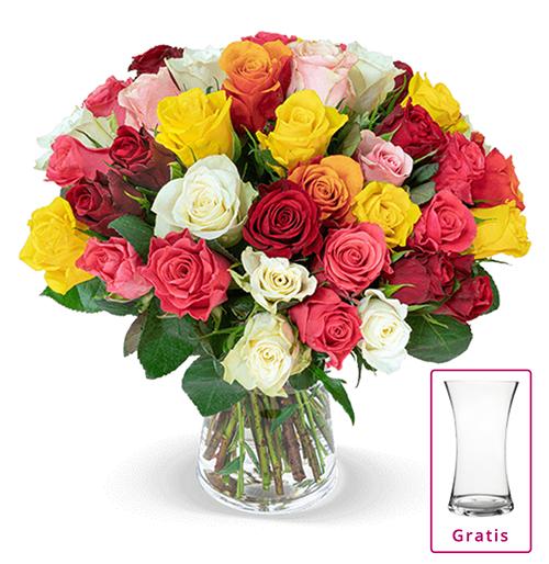 33 bunte Rosen für nur 24,98 Euro inkl. Versand + gratis Vase