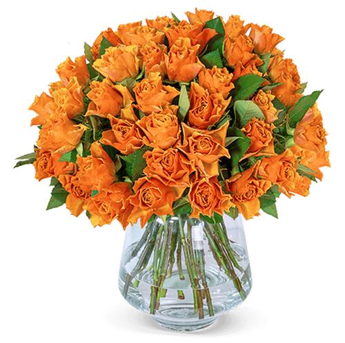 40 orangene Rosen für nur 23,98 Euro inkl. Lieferung