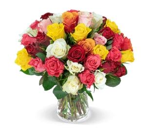 Blumenstrauß Crazy in Love mit 35 bunten Rosen für nur 25,98€ inkl. Lieferung