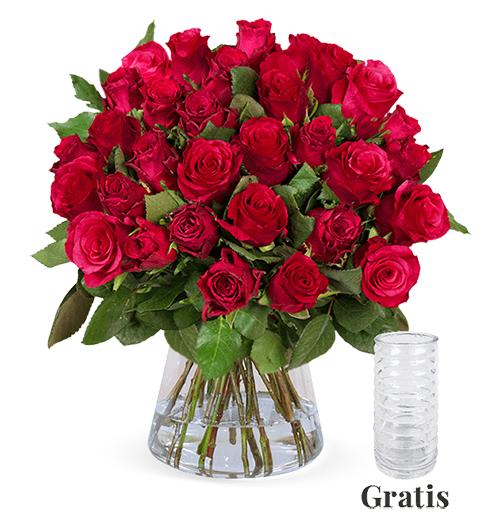 25 langstielige, rote Rosen für nur 24,98 Euro inkl. Zustellung + gratis Vase