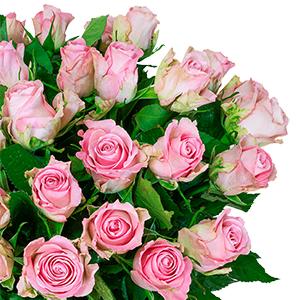 Blumenstrauß mit 40 roséfarbene Rosen für nur 24,98 Euro inkl. Lieferung