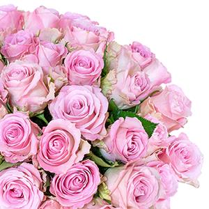25 roséfarbene Rosen und gratis Vase für nur 24,98 Euro inkl. Lieferung