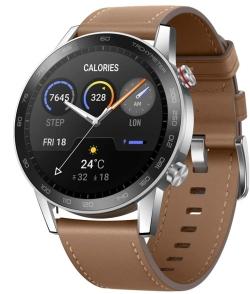 HONOR Smartwatch Magic Watch 2 46 mm in Flax Brown für 128,15€