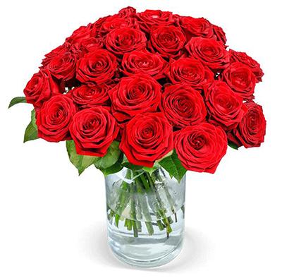 24 Red Naomi Rosen mit XXL Blüten (Stiellänge 50cm) für nur 25,98 € inkl. Versand