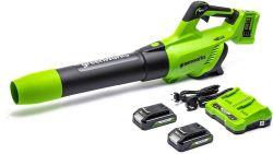 Greenworks 2 X 24V Akku-Gebläse mit 2 Akku und Ladegerät für 129,99€