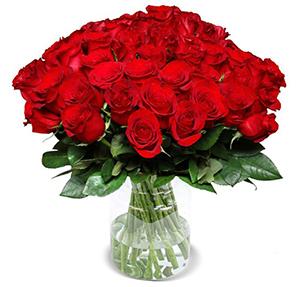 40 Classic Red XXL Rosen (Stiellänge 50cm) für nur 25,98 € inkl. Versand